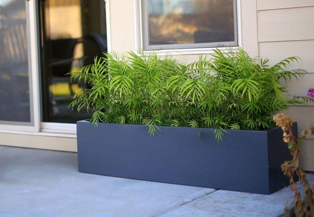 figerglass planter