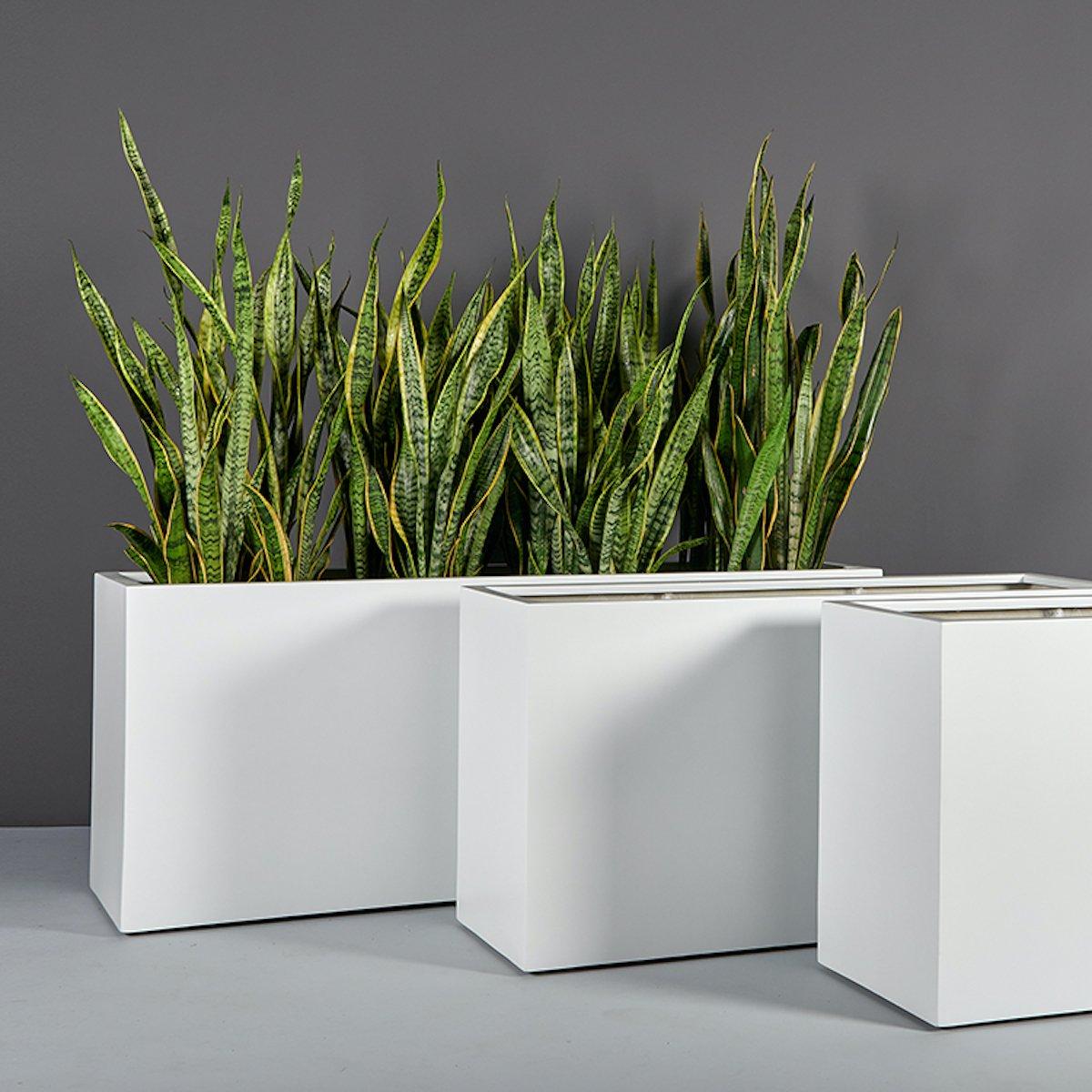 CDM Fiberglass Planters