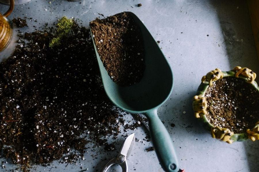 Gardening Scoop and Soil