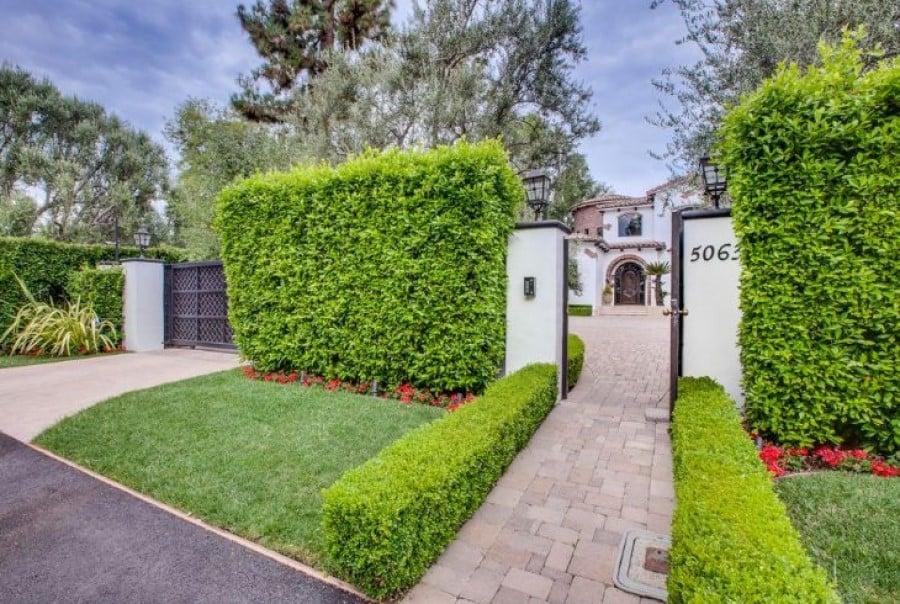 Front house privet hedge
