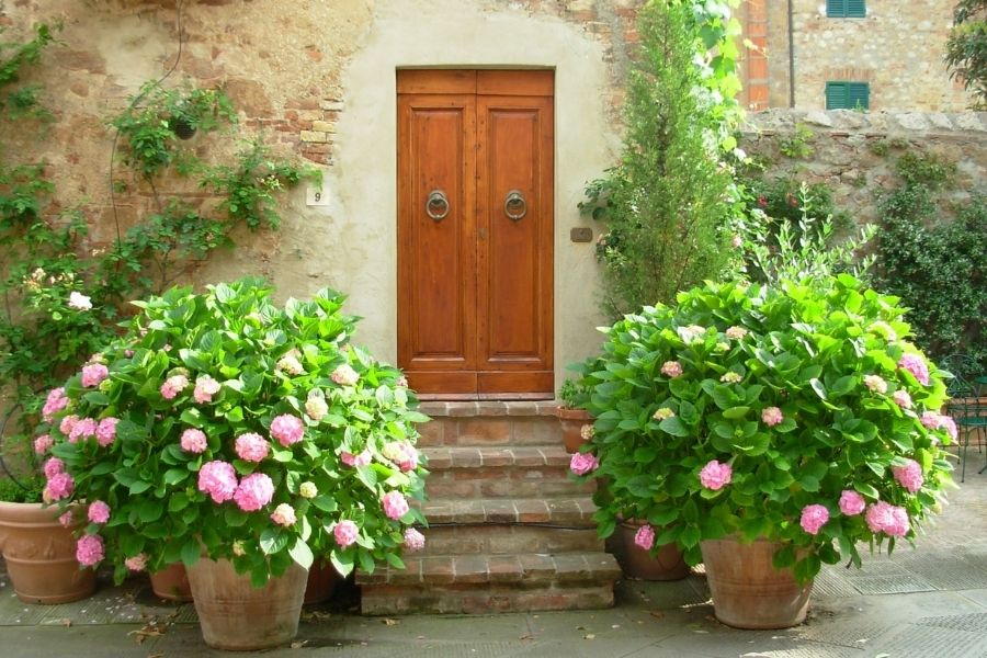 Beautiful flower pots in front if house