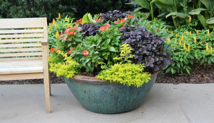 Big flower pots in the garden
