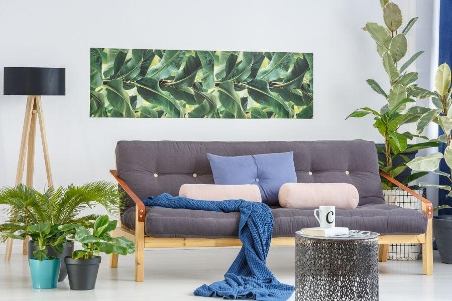Plants in living room interior