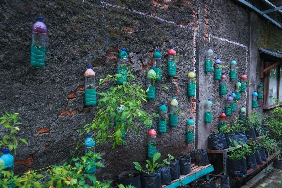 plant pot recycle
