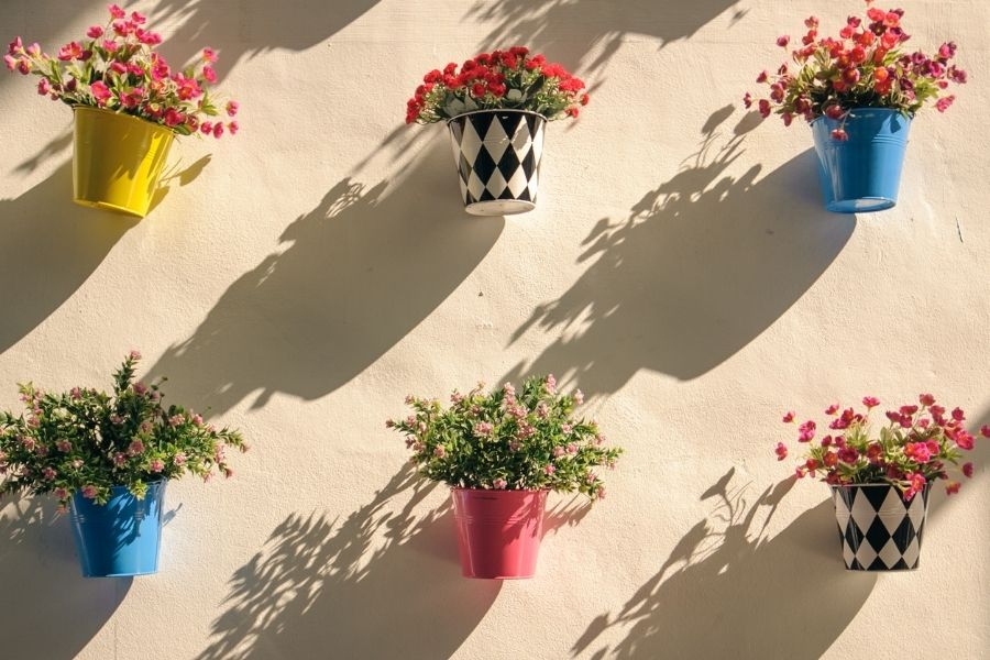 Colorful flower pot and shadow