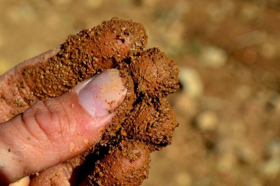 Fingers feeling brown soil