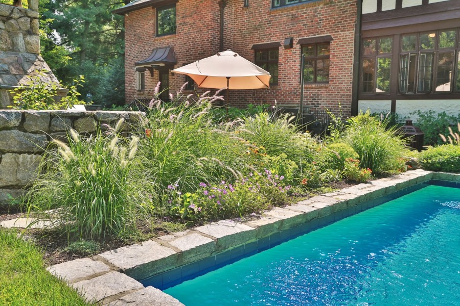 Ornamental grasses for poolside landscaping