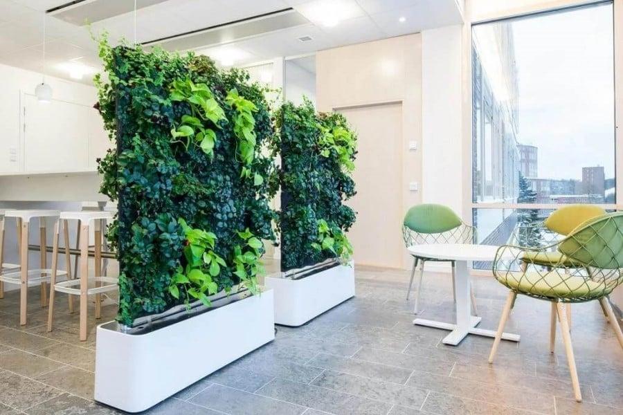 planters divide space