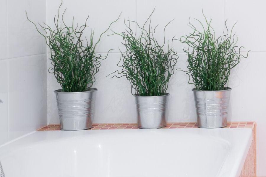 metal plant pots